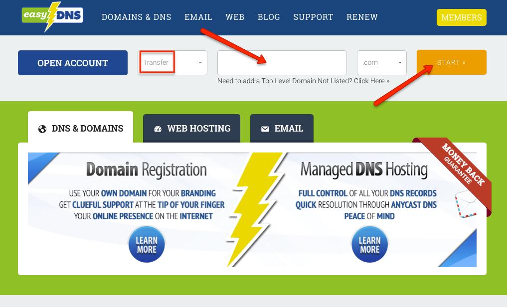 domain extesion format